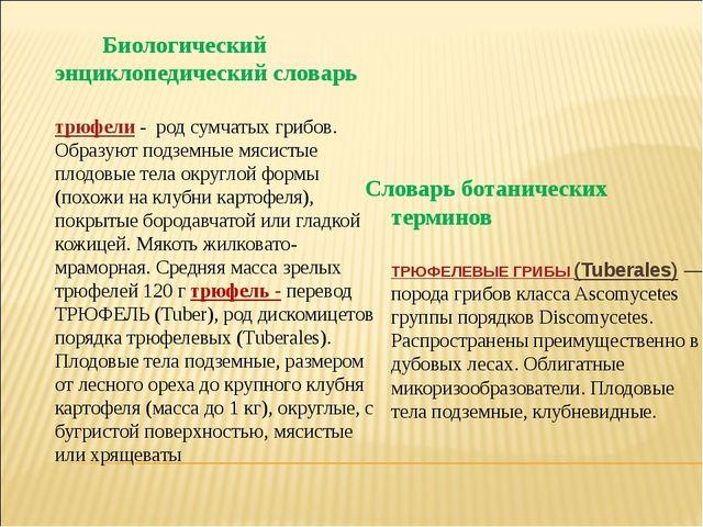Биологический энциклопедический словарь трюфели- род сумчатых грибов. Образ...