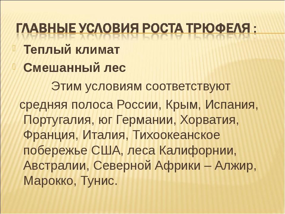 Теплый климат Смешанный лес Этим условиям соответствуют средняя полоса России...