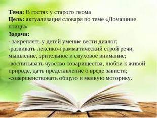 Тема: В гостях у старого гнома Цель: актуализация словаря по теме «Домашние п