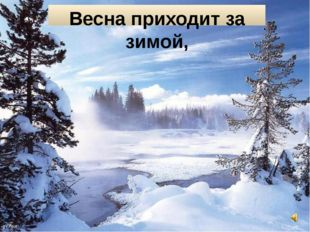 Весна приходит за зимой,