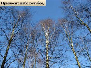 Приносит небо голубое,