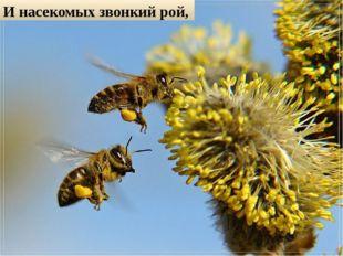 И насекомых звонкий рой,