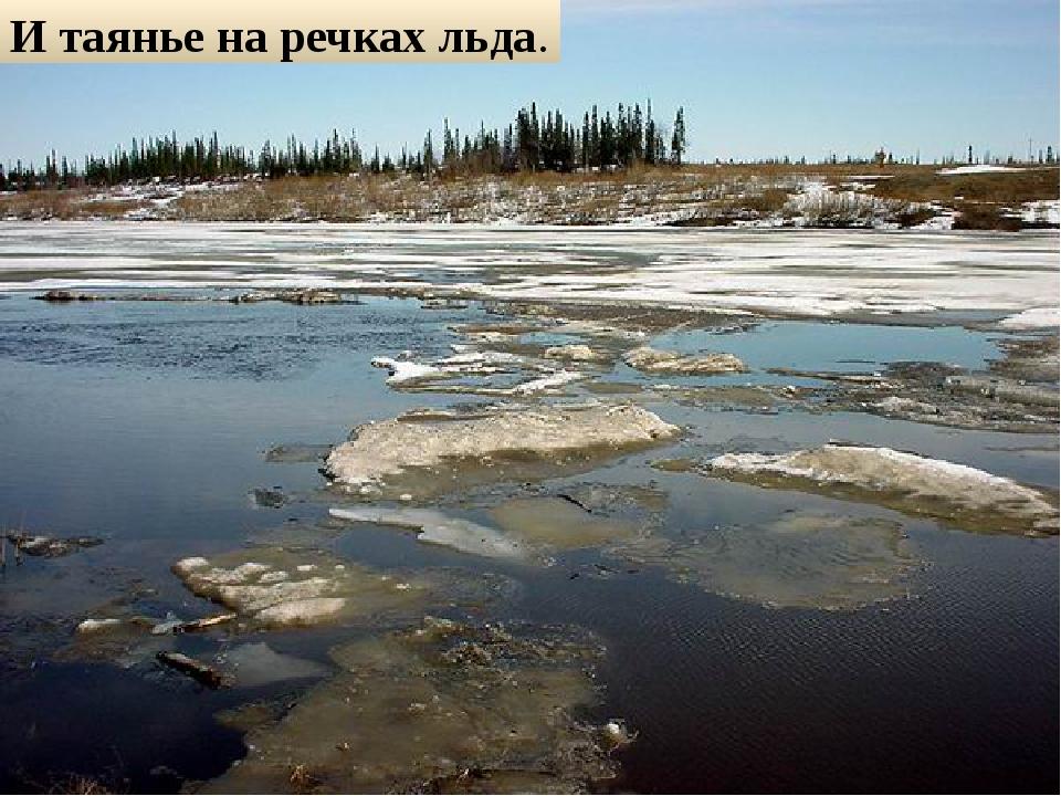 И таянье на речках льда.