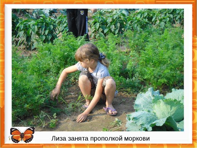 Лиза занята прополкой моркови