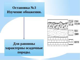 Остановка №3 Изучение обнажения. Для равнины характерны осадочные породы.