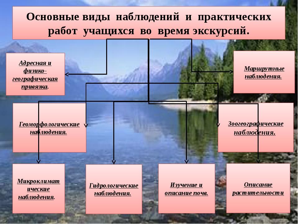 Основные виды наблюдений и практических работ учащихся во время экскурсий. Ад...