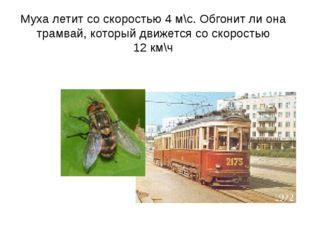 Муха летит со скоростью 4 м\с. Обгонит ли она трамвай, который движется со ск