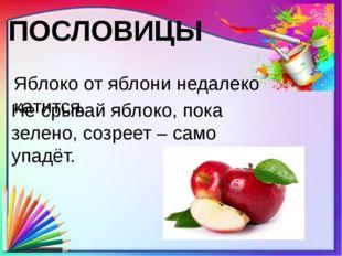 ПОСЛОВИЦЫ Яблоко от яблони недалеко катится. Не срывай яблоко, пока зелено, с