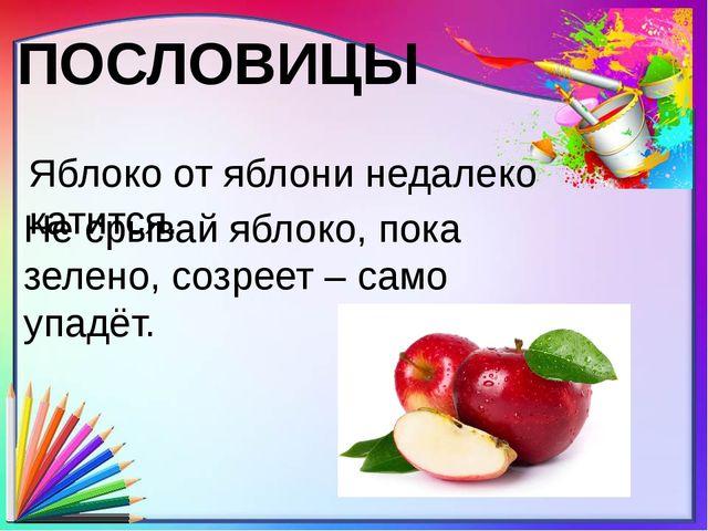 ПОСЛОВИЦЫ Яблоко от яблони недалеко катится. Не срывай яблоко, пока зелено, с...