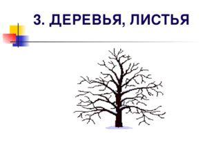 3. ДЕРЕВЬЯ, ЛИСТЬЯ