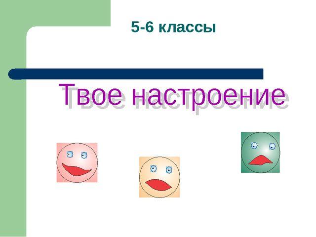 5-6 классы