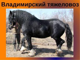 Владимирский тяжеловоз