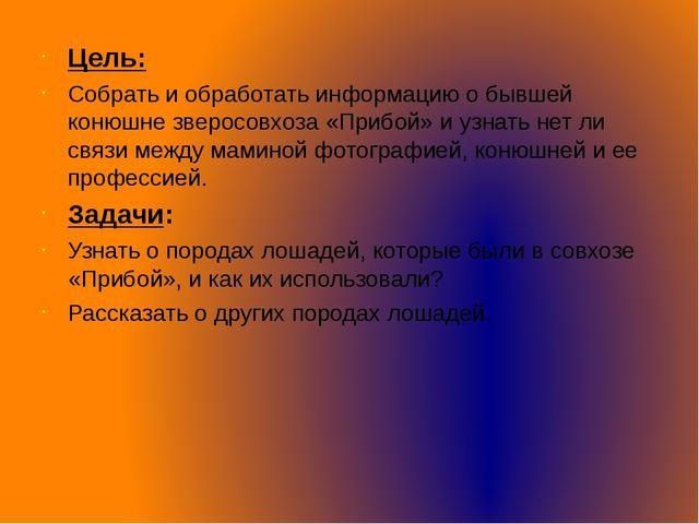 Цель: Собрать и обработать информацию о бывшей конюшне зверосовхоза «Прибой»...