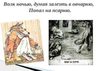 Волк ночью, думая залезть в овчарню, Попал на псарню.