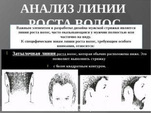 АНАЛИЗ ЛИНИИ РОСТА ВОЛОС Затылочная линия роста волос, которая обычно располо