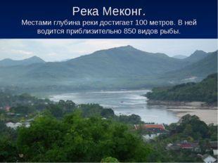Река Меконг. Местами глубина реки достигает 100 метров. В ней водится приблиз