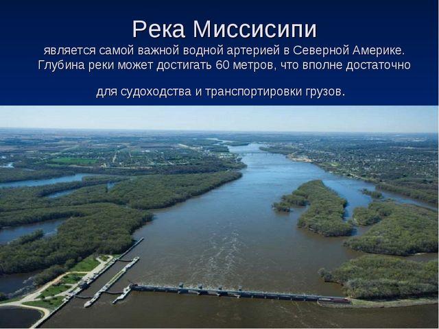 Река Миссисипи является самой важной водной артерией в Северной Америке. Глуб...