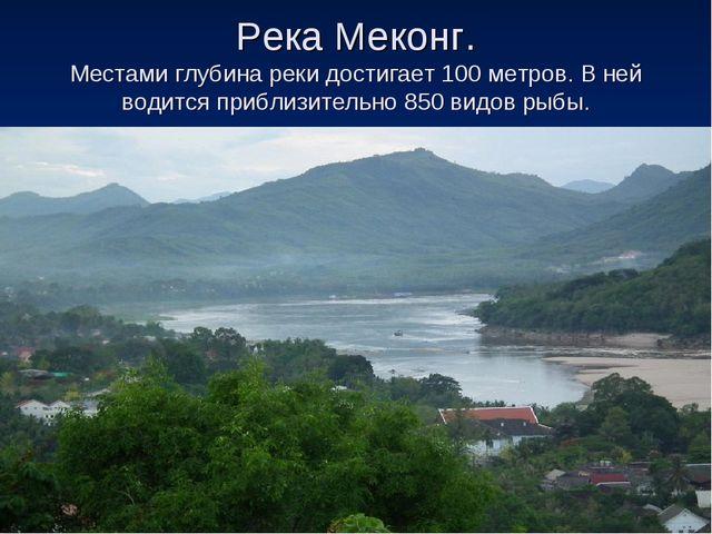 Река Меконг. Местами глубина реки достигает 100 метров. В ней водится приблиз...