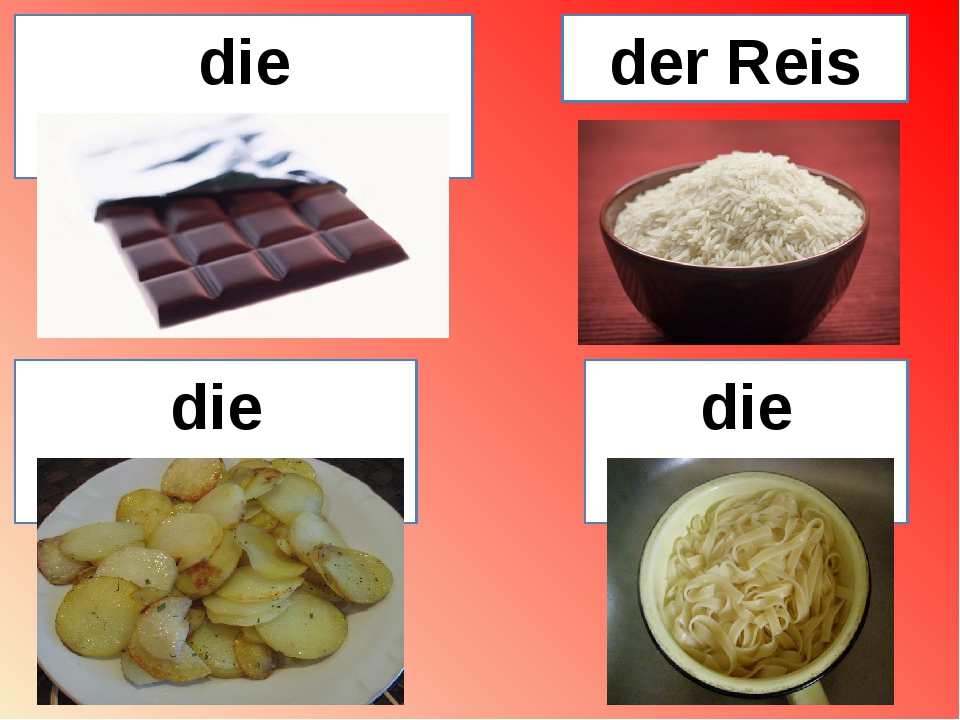 die Schokolade die Nudeln der Reis die Kartoffeln