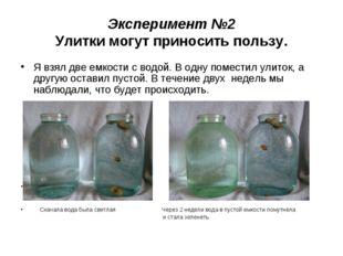 Эксперимент №2 Улитки могут приносить пользу. Я взял две емкости с водой. В о