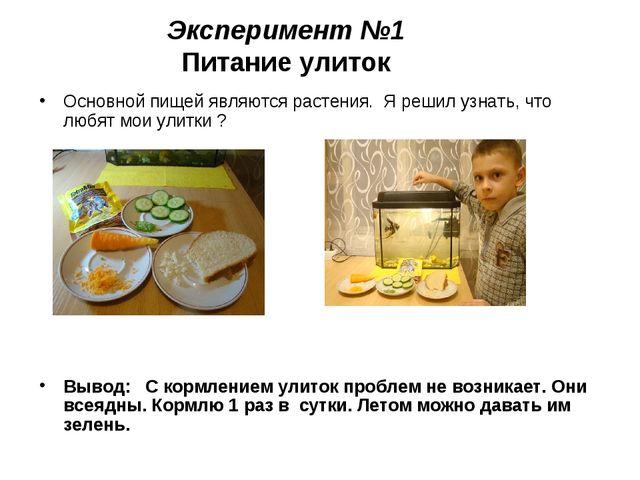 Эксперимент №1 Питание улиток Основной пищей являются растения. Я решил узнат...