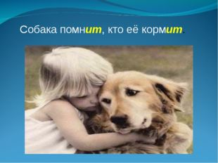 Собака помнит, кто её кормит.