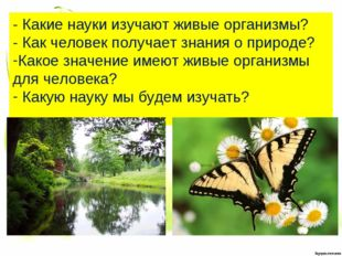 - Какие науки изучают живые организмы? - Как человек получает знания о природ