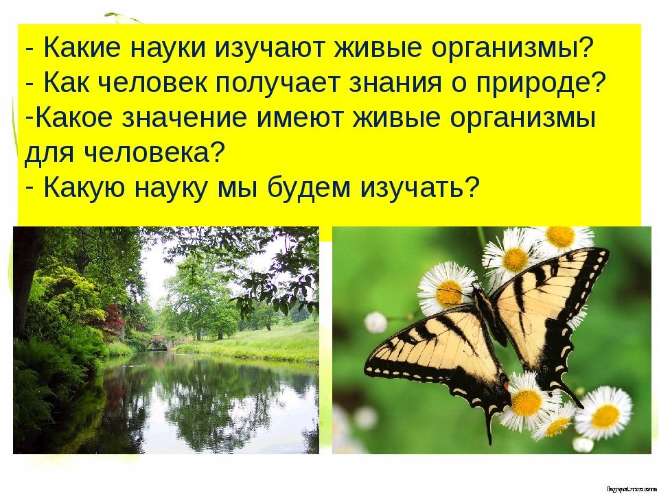 - Какие науки изучают живые организмы? - Как человек получает знания о природ...