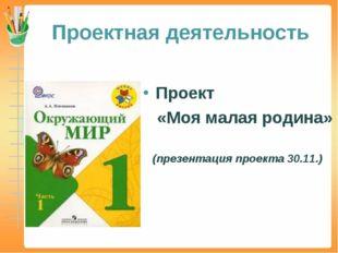 Проектная деятельность Проект «Моя малая родина» (презентация проекта 30.11.)
