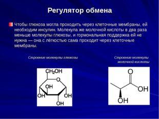 Регулятор обмена Чтобы глюкоза могла проходить через клеточные мембраны, ей н