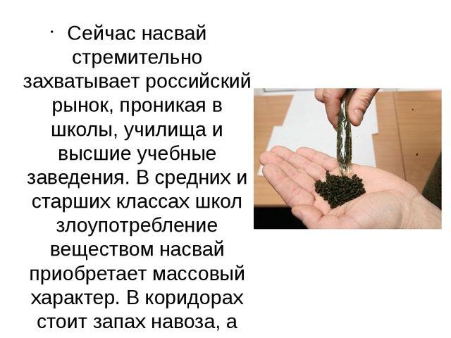 Сейчас насвай стремительно захватывает российский рынок, проникая в школы, у...