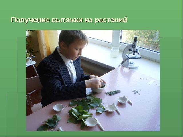 Получение вытяжки из растений