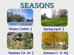 SEASONS Winter [ʹwintə] Spring [spriƞ] Summer [ʹsʌmə] Autumn [ʹɔ:təm]