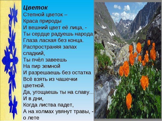 Цветок Степной цветок – Краса природы И вешний цвет её лица, - Ты сердце раду...