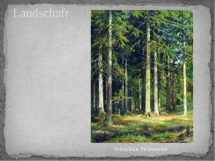 Landschaft Schischkin. Fichtenwald