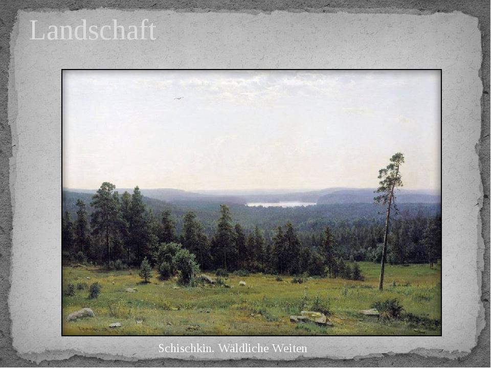 Landschaft Schischkin. Wäldliche Weiten