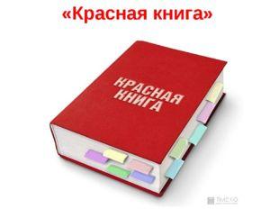 «Красная книга»
