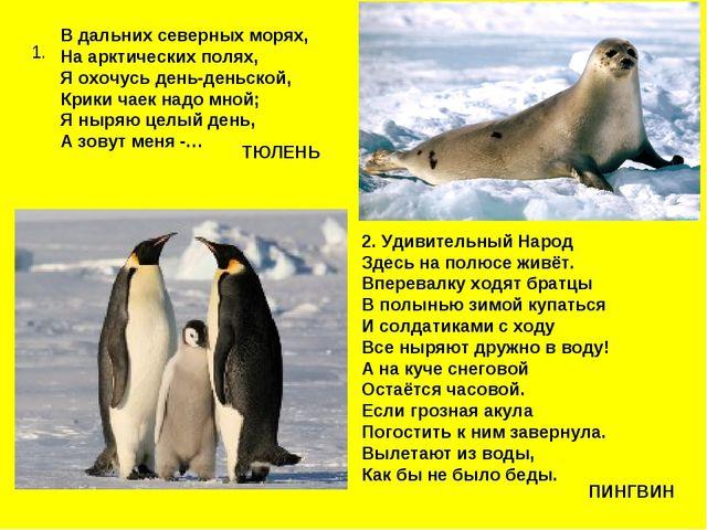 1. В дальних северных морях, На арктических полях, Я охочусь день-деньской, К...