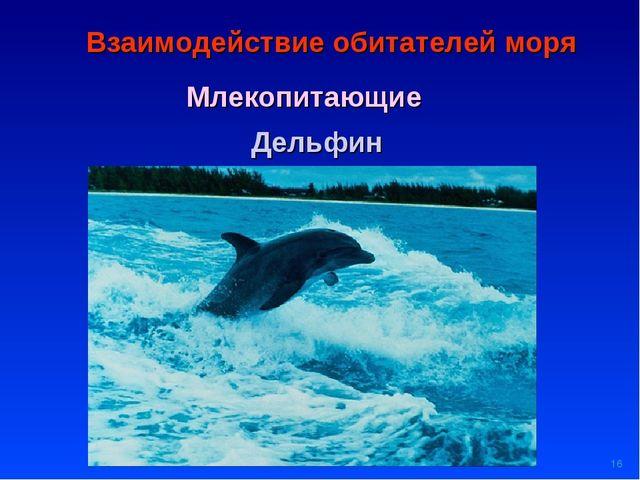 * Взаимодействие обитателей моря Млекопитающие Дельфин