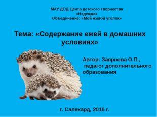 Тема: «Содержание ежей в домашних условиях» Автор: Заярнова О.П., педагог до