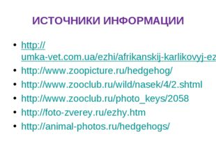 ИСТОЧНИКИ ИНФОРМАЦИИ http://umka-vet.com.ua/ezhi/afrikanskij-karlikovyj-ezh.h