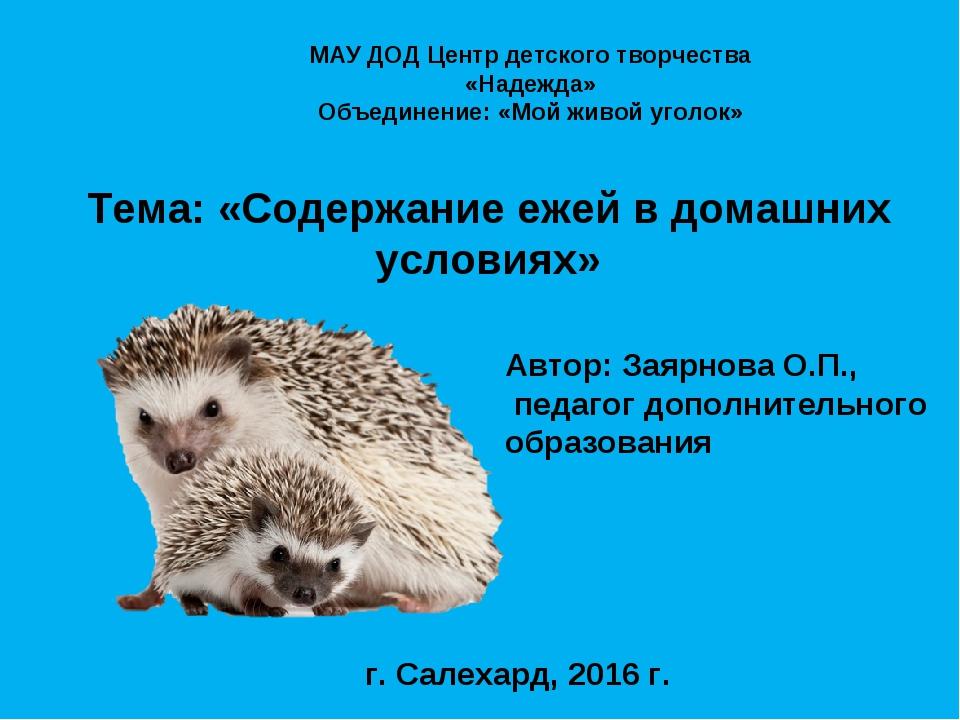 Тема: «Содержание ежей в домашних условиях» Автор: Заярнова О.П., педагог до...
