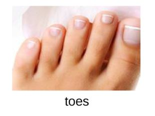 toes