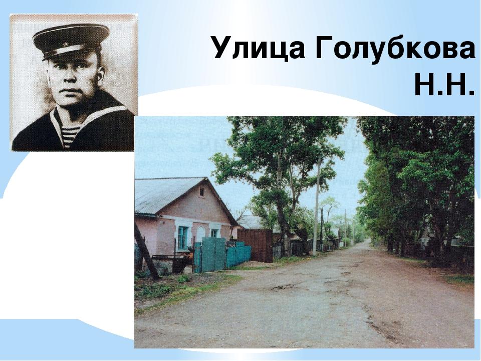 Улица Голубкова Н.Н.