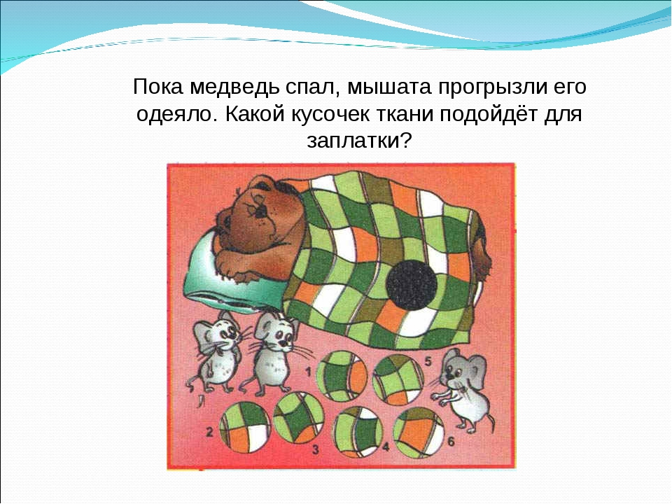 Пока медведь спал, мышата прогрызли его одеяло. Какой кусочек ткани подойдёт...