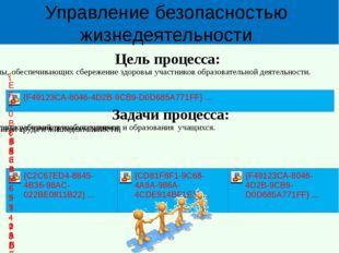 Управление безопасностью жизнедеятельности Цель процесса: Задачи процесса: