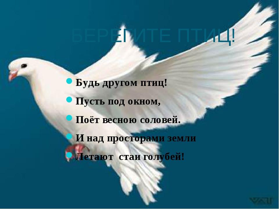 БЕРЕГИТЕ ПТИЦ! Будь другом птиц! Пусть под окном, Поёт весною соловей. И над...