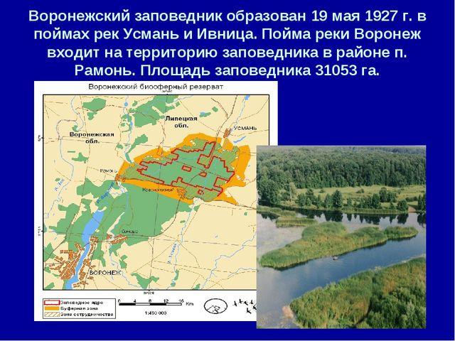 Воронежский заповедник образован 19 мая 1927 г. в поймах рек Усмань и Ивница....