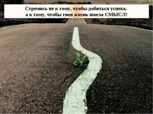 Стремись не к тому, чтобы добиться успеха, а к тому, чтобы твоя жизнь имела С
