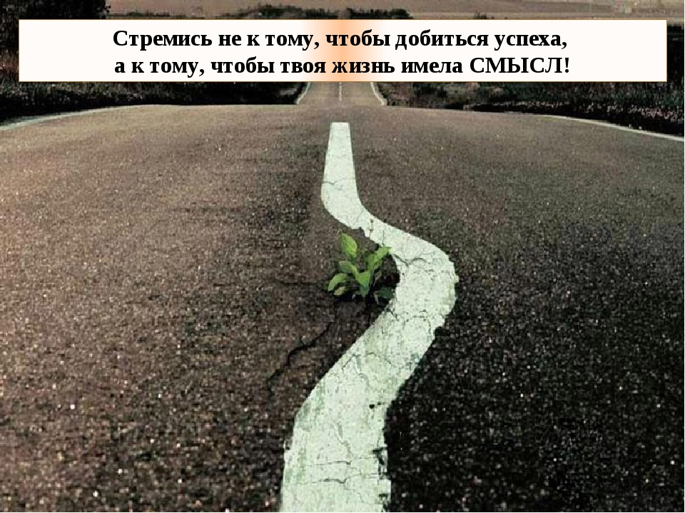 Стремись не к тому, чтобы добиться успеха, а к тому, чтобы твоя жизнь имела С...